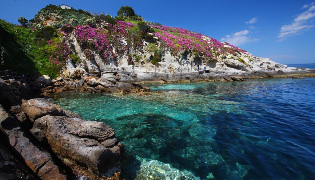 Capo-SantAndrea-Elba[1].jpg